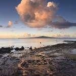 Stills_Photo_Tours-David_Still-New_ Zealand-Hauraki_Gulf-3649